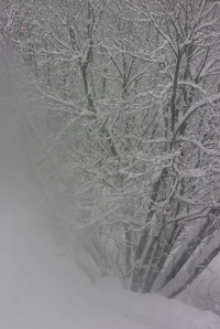 and the snow continues to fall